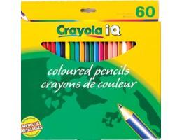 Regular Coloured Pencils 60CT