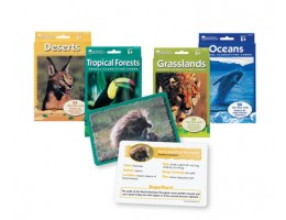 Animal Classifying Cards