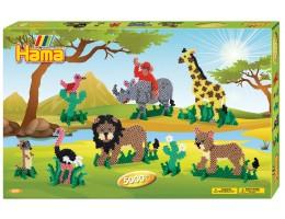 Gift Box - Safari