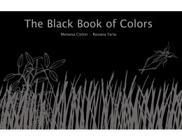 The Black Book of Colours, Braille