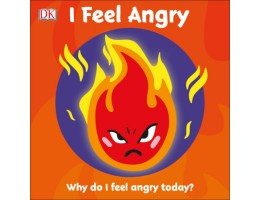 I Feel Angry! Why do I feel angry today?