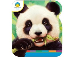 Large Shaped Board Book Giant Pandas