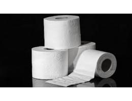 2 Ply Toilet Tissue