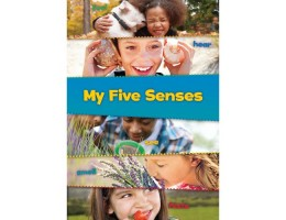 These are My Senses (5) Soft Cover