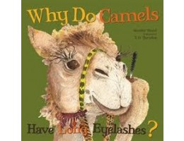 Why Do Camels Have Long Eyelashes Soft Cover